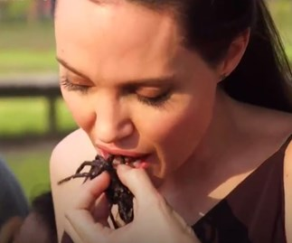 WATCH: Angelina Jolie and her kids eat scorpions without even wincing