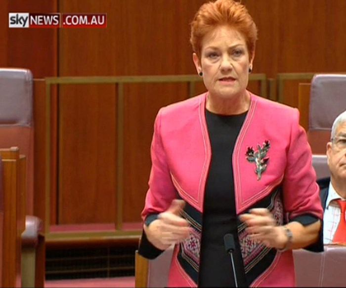 Pauline Hanson says women will deliberately get pregnant to get paid leave