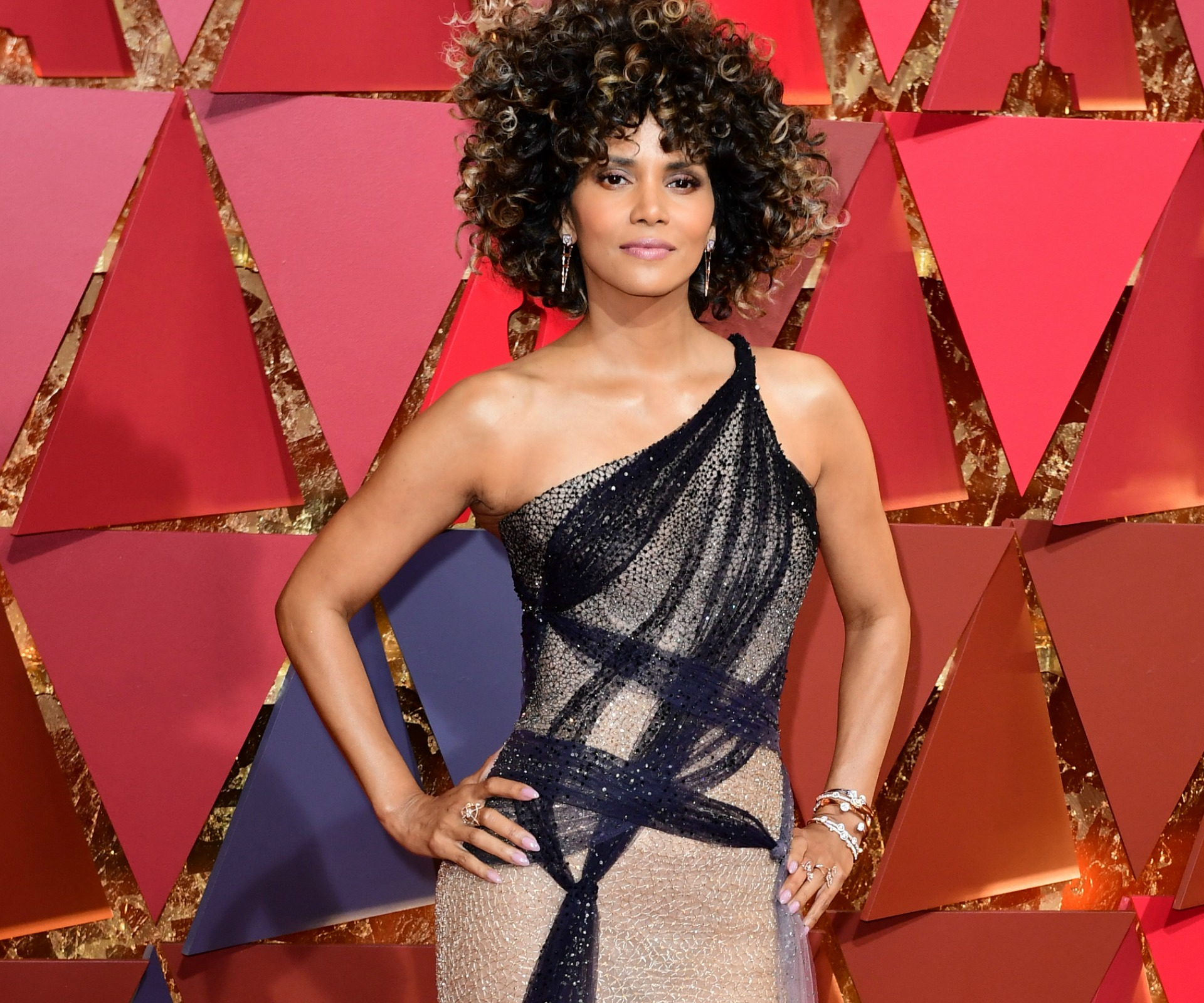 Halle Berry Shimmers on the Red Carpet at the Oscars 2017