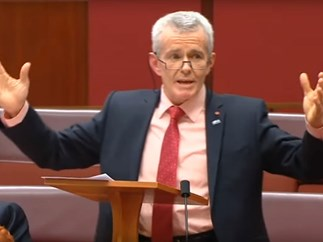 """One Nation senator says some girls like being """"wolf-whistled"""""""