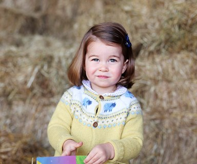 As pretty as a Princess: The Royal Family release a stunning new photo of Charlotte