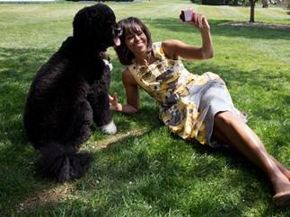 Michelle Obama dog