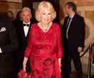 Camilla Parker Bowles opens up about Prince Charles affair: 'I couldn't go anywhere for a year'