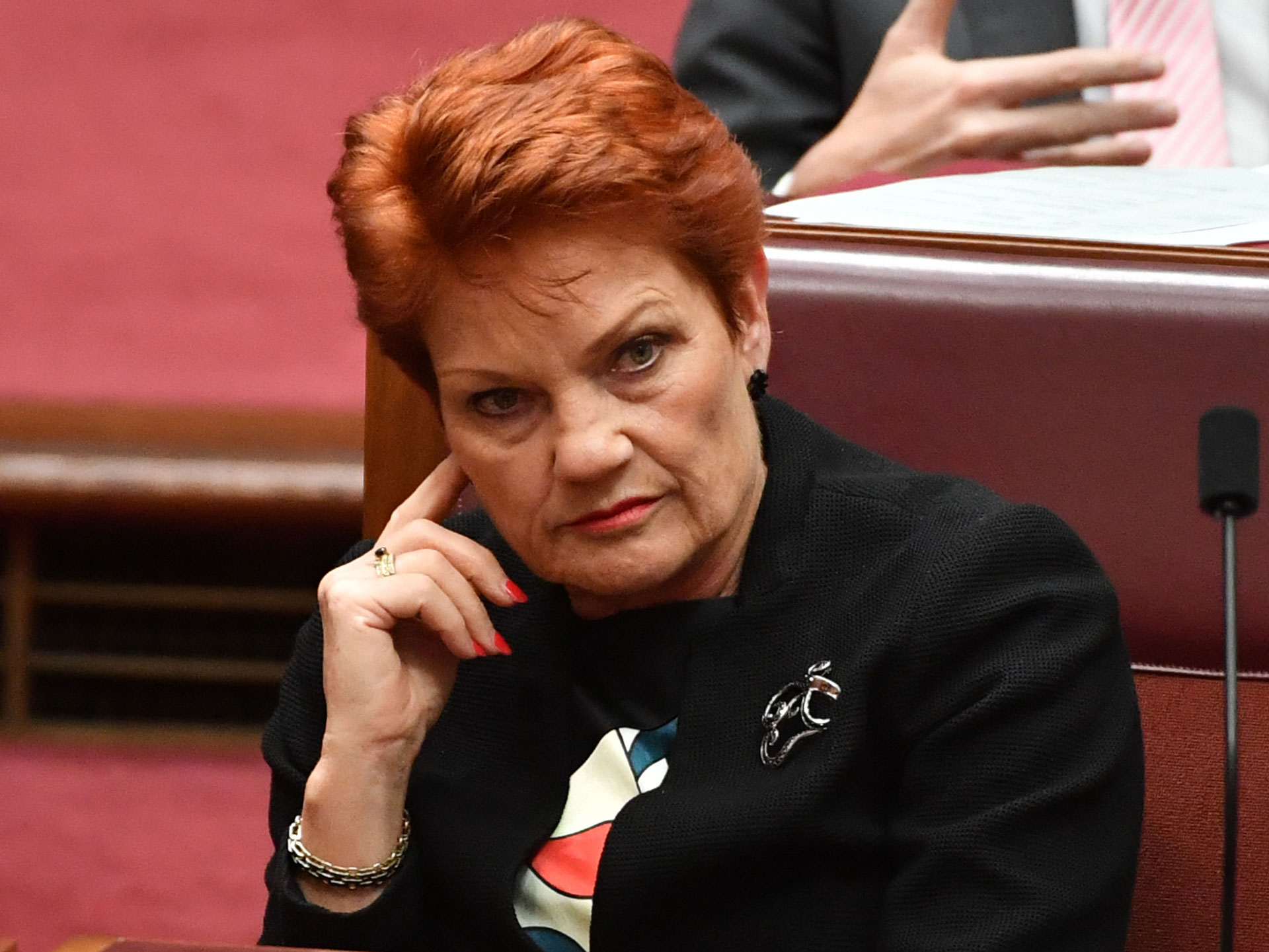 Pauline Hanson's autism comments raise questions about education resources
