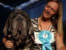 "Meet Martha... winner of ""The Ugliest Dog in the World"""