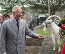 The royals have a glorious time out and about