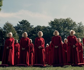 New sperm report is drawing major Handmaid's Tale comparisons