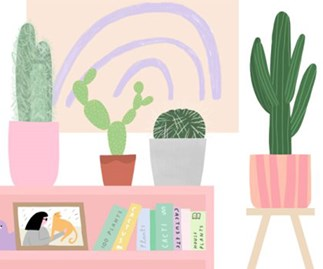 Everything you need to know about your cactus