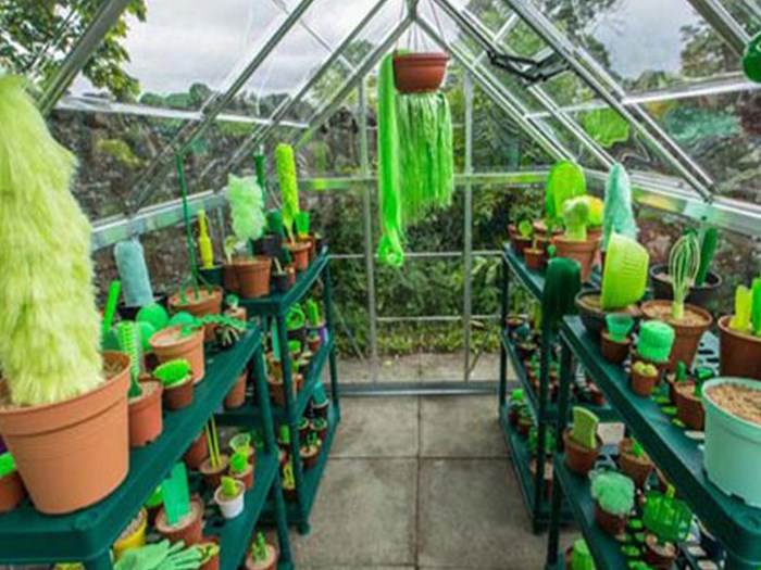 How to keep your plants alive: We might have found a solution