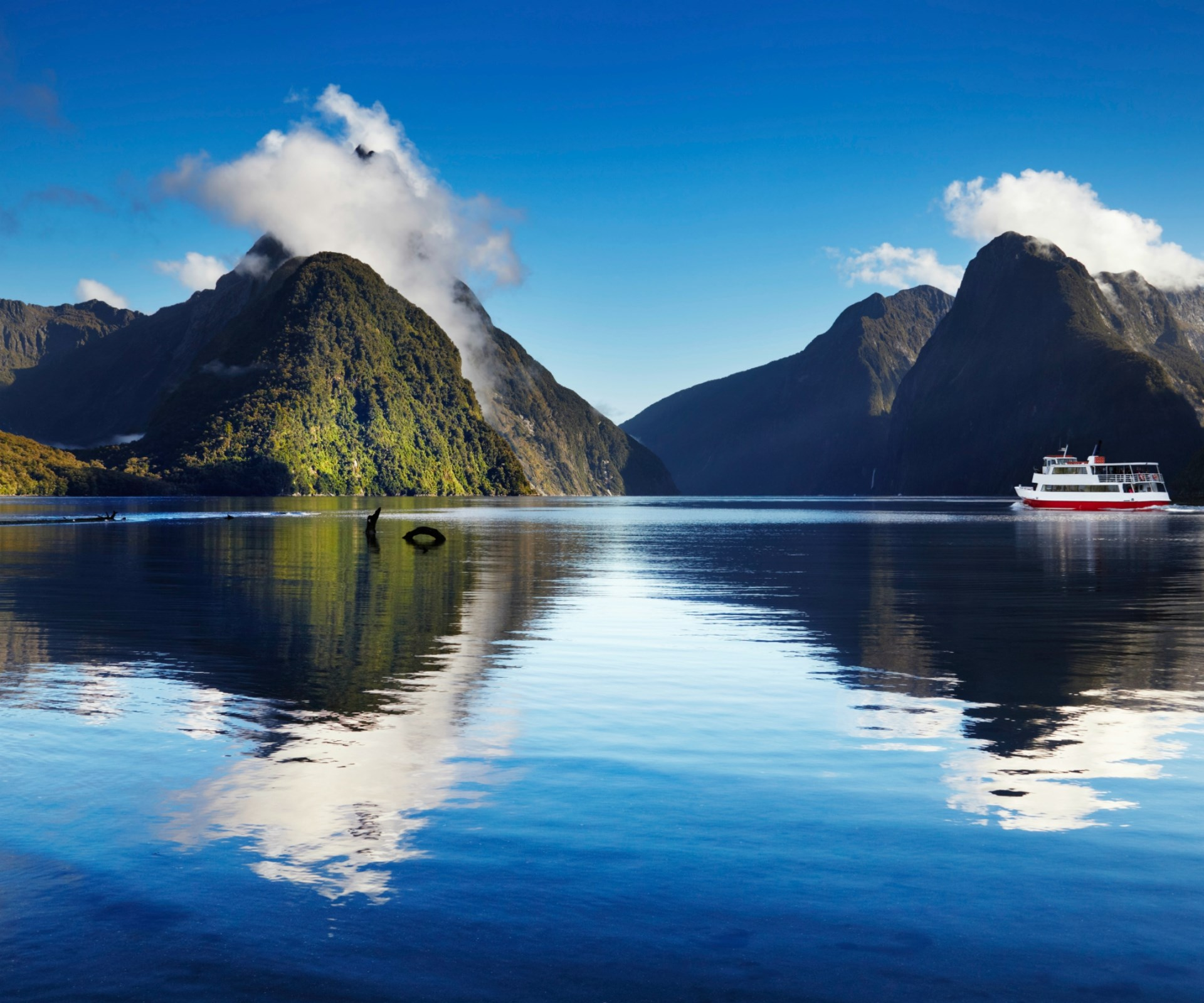 **New Zealand** Auckland and Wellington have magnificent harbours. Queen Charlotte, Doubtful and Milford Sounds have gorgeous scenery. Towns such as Dunedin and Akaroa have historic charm and great shore excursions. What's not to like about New Zealand? The adventurous can head on expedition ships to the country's wildlife-rich sub-Antarctic islands. *Recommended: [Kiwi Adventure](http://www.pocruises.com.au/findacruise/pages/CruiseProfile.aspx?CruiseCode=P544N) via [cruises.com.au](http://www.cruises.com.au/).*: [object Object]