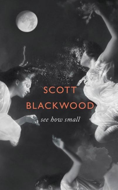 """See How Small by Scott Blackwood. Purchase [here.](http://www.amazon.com/See-How-Small-A-Novel/dp/031637380X