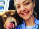 Amanda Seyfried throws her dog, Finn, an EPIC birthday party