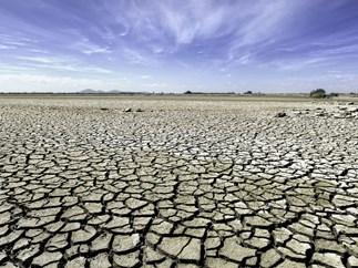 sex drought positives