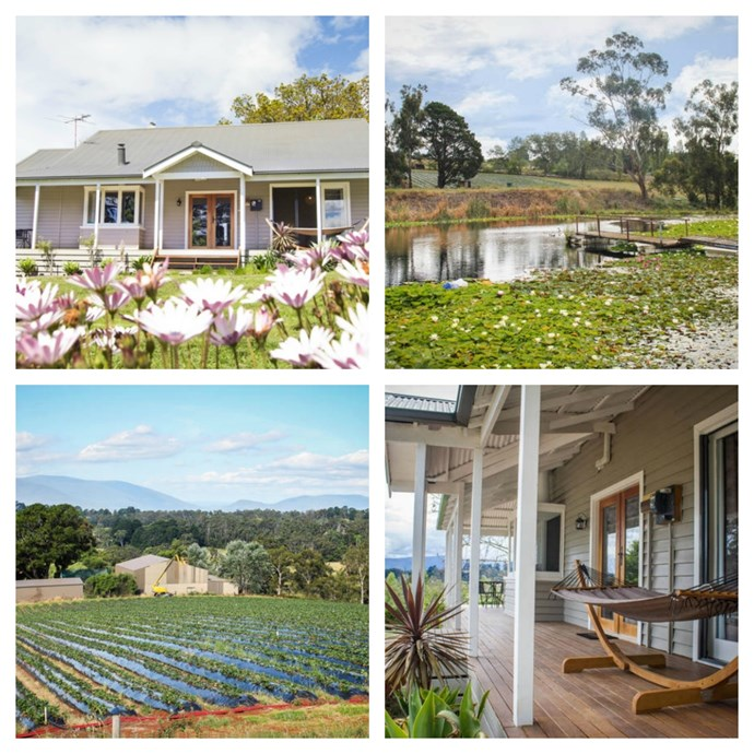 "[**The Strawberry Farm Retreat, VIC**](https://www.stayz.com.au/accommodation/vic/yarra-valley-dandenong-ranges/yarra-valley/184004|target=""_blank""