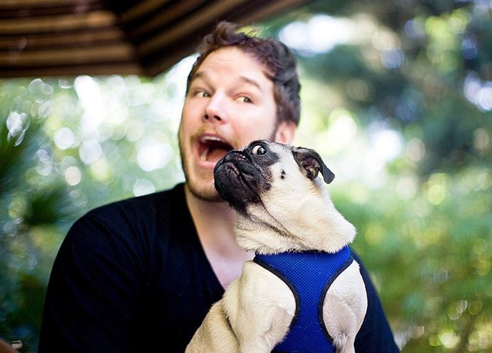 We are very much here for Chris Pratt holding a dog.