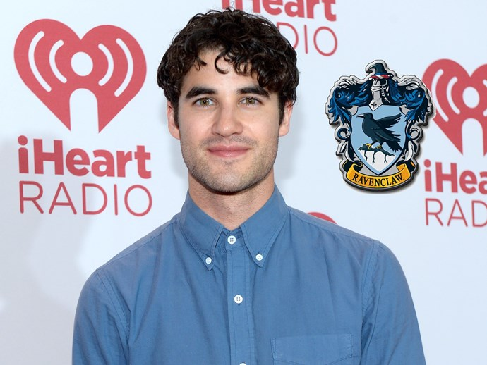 **Darren Criss**, who is a *HP* geek, considers himself a Ravenclaw (but told fans Blaine from *Glee* is a Gryffindor!)