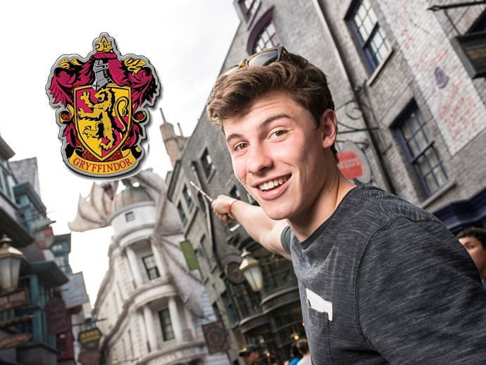 **Shawn Mendes** is a surprising *HP* nerd, and a proud Gryffindor.