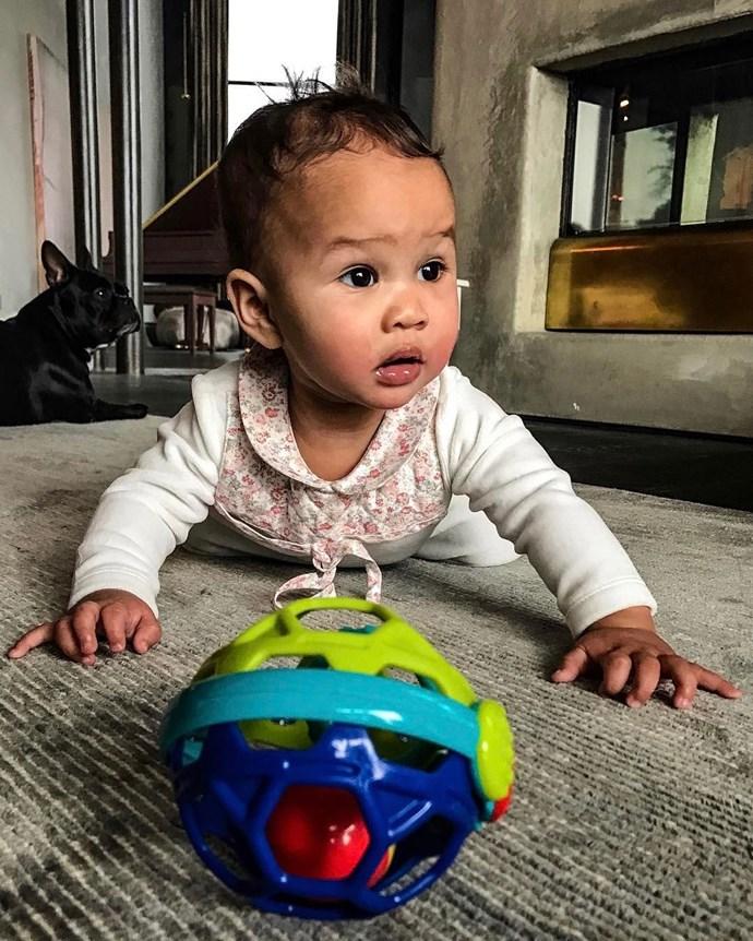 When Luna turned nine-months-old!