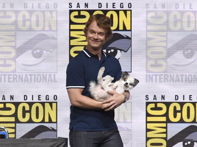 Alfie Allen's Puppy Was the Real Star of the 'Game of Thrones' Panel at Comic-Con