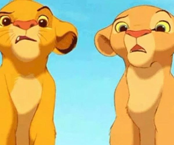 Disney Lion King Mufasa Scar Not Brothers