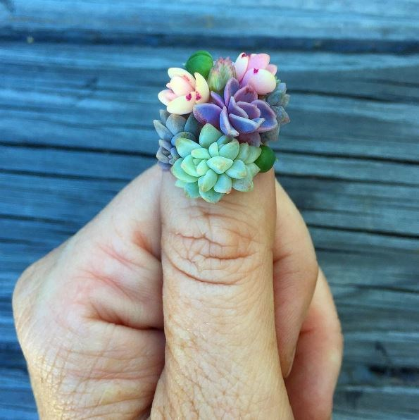 Succulent nails are the newest beauty trend taking over Instagram, and we just don't even know anymore. It's bloody adorable but how the heck could you get anything done without ruining them?! According to Aussie artist Roz Borg, it's possible for teeny plants to survive near your cuticles.