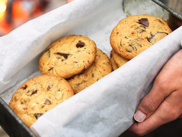 Choc malt cookies