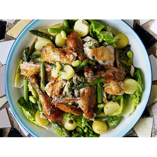 Warm roast chicken salad with tarragon cream dressing ...