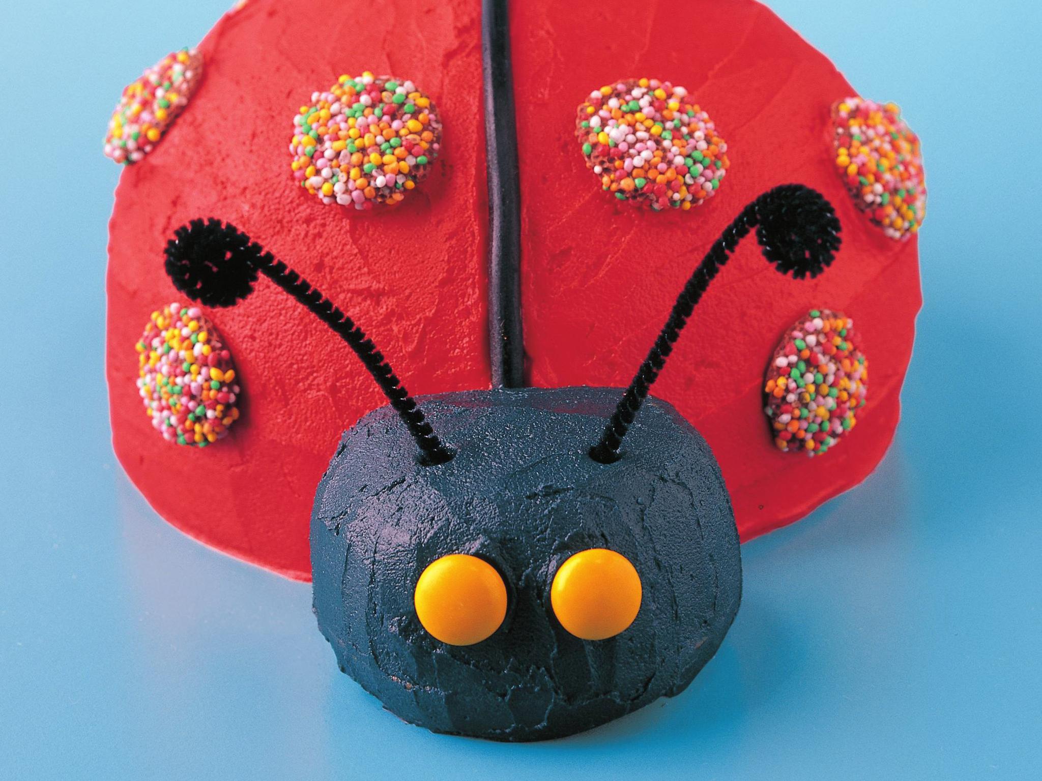 Ladybird Birthday Cake Recipe Food To Love