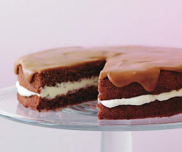 Chocolate sponge recipe food to love for Chocolate sponge ingredients