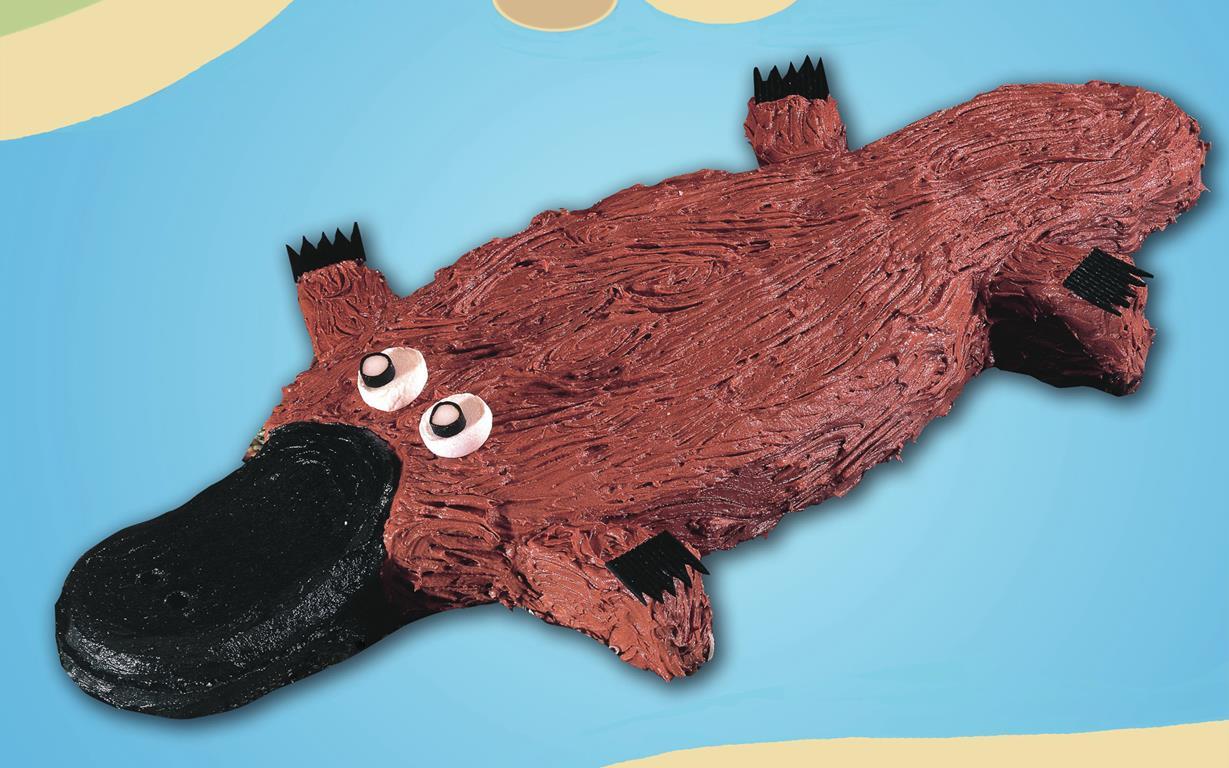 Bruce Platypus Cake