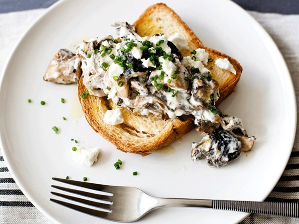 Creamy mushrooms on toasted brioche