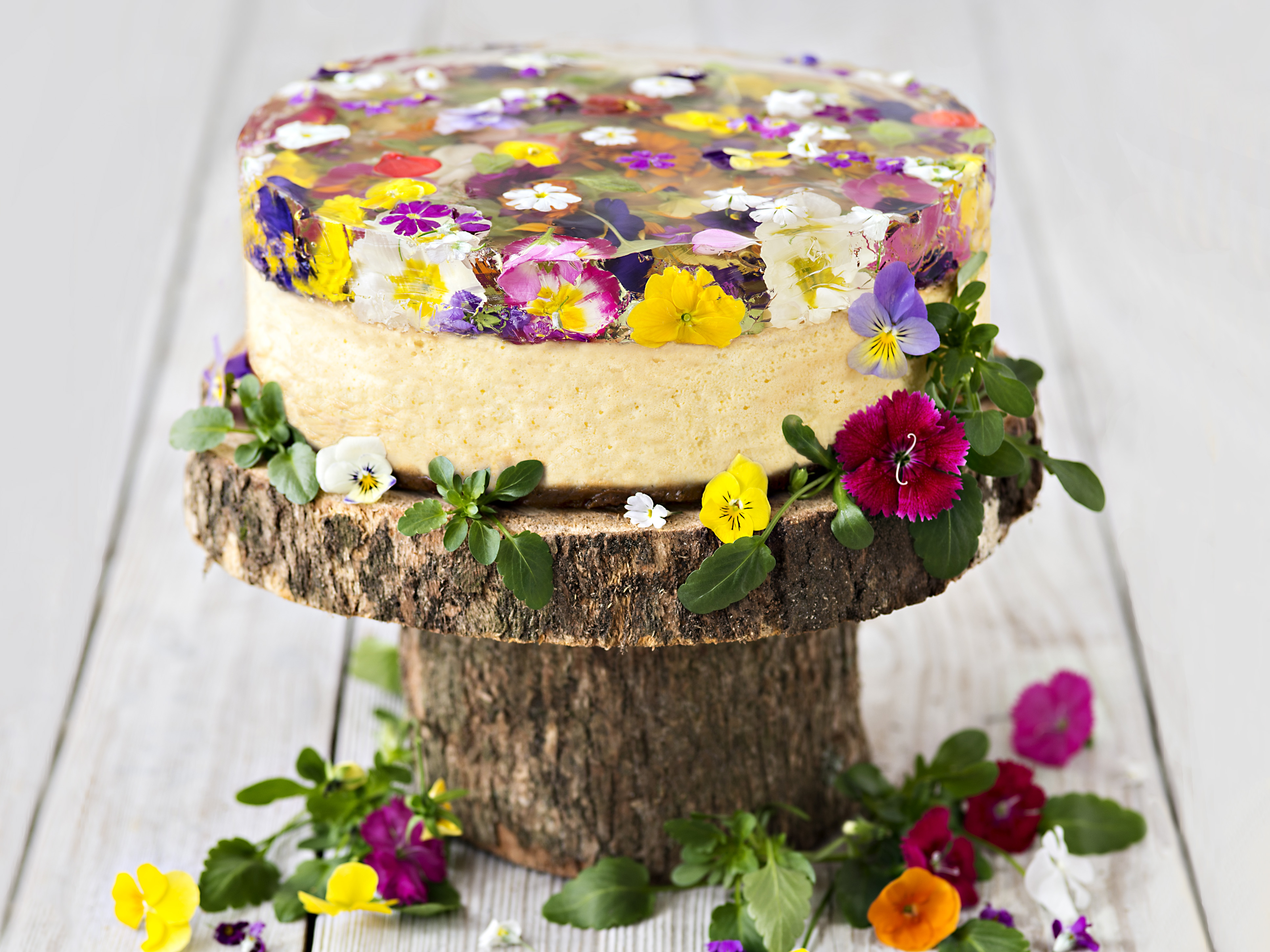 Baked ricotta cake with spring flower jelly recipe food to love mightylinksfo