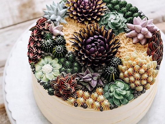 Lifelike succulent cakes are our favourite new food trend