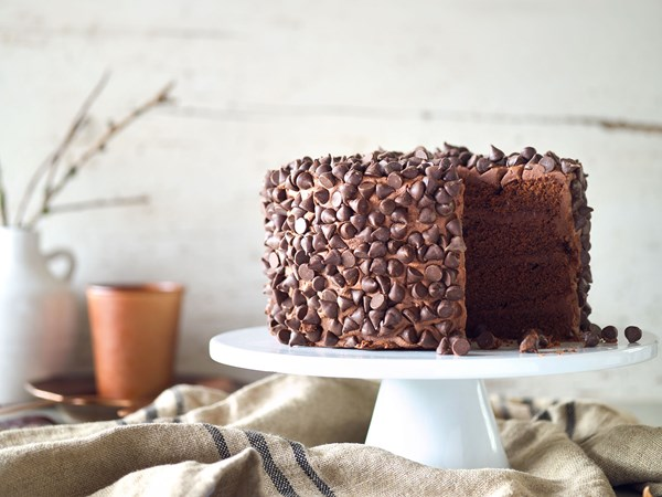 Chocolate lovers layer cake with fudge frosting