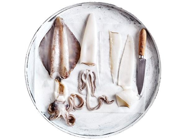 How to prepare squid