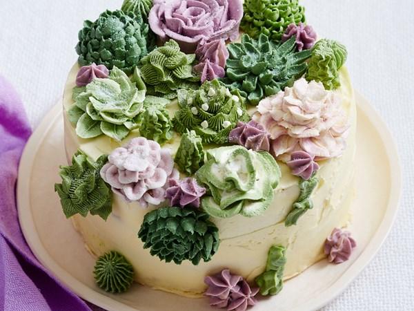 Buttercream succulent plant cake