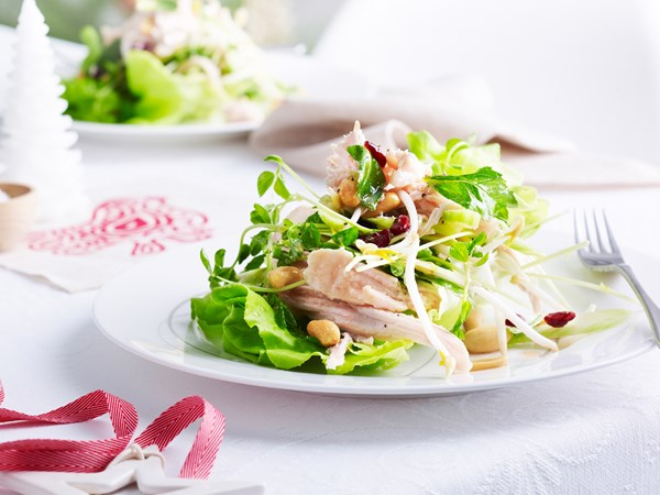 Turkey, cranberry and peanut salad
