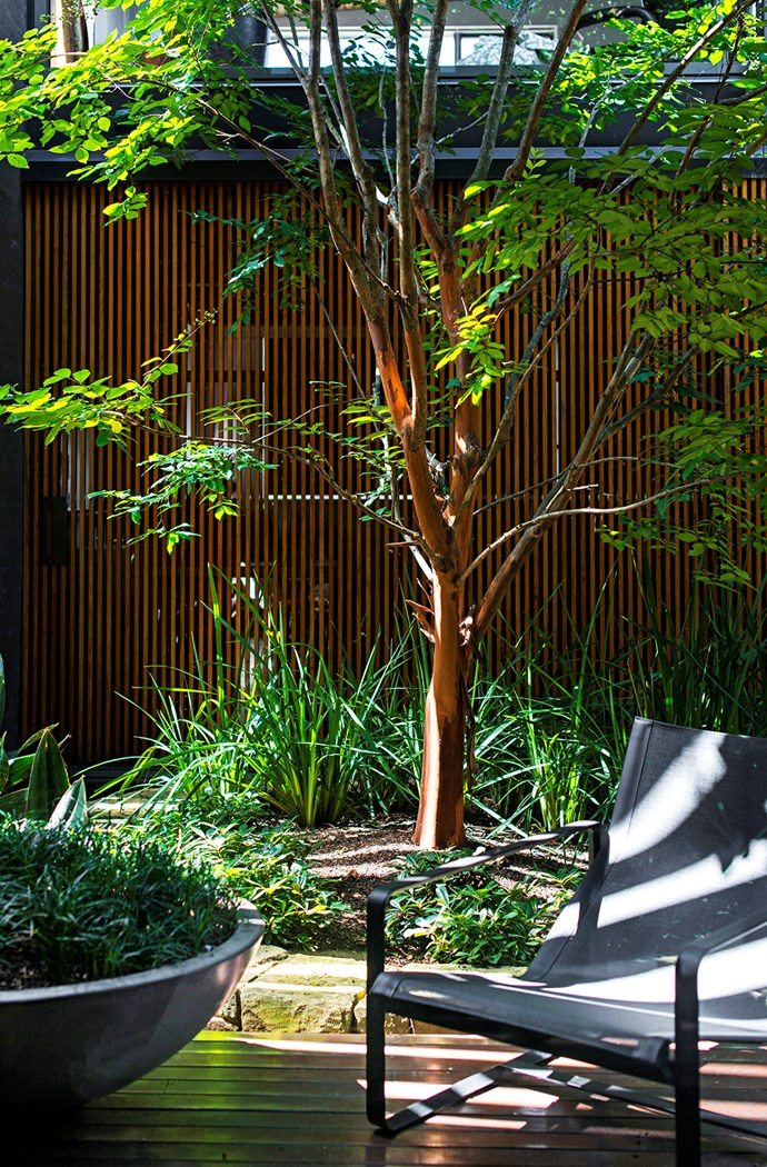 """""""Everything is visible from the home, and there's no room for plants that don't perform,"""" says Richard."""