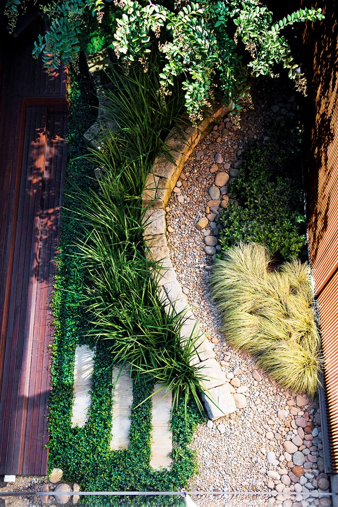 This overhead view of the atrium shows the sandstone wall and river pebbles curving through the space. For a groundcover, Richard has used Japanese star jasmine (*Trachelospermum asiaticum*). It's finer than Chinese star jasmine yet it's a vigorous grower that does well in either sun or shade.