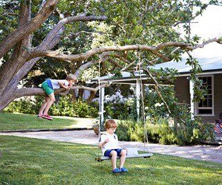 Crabapple tree swing