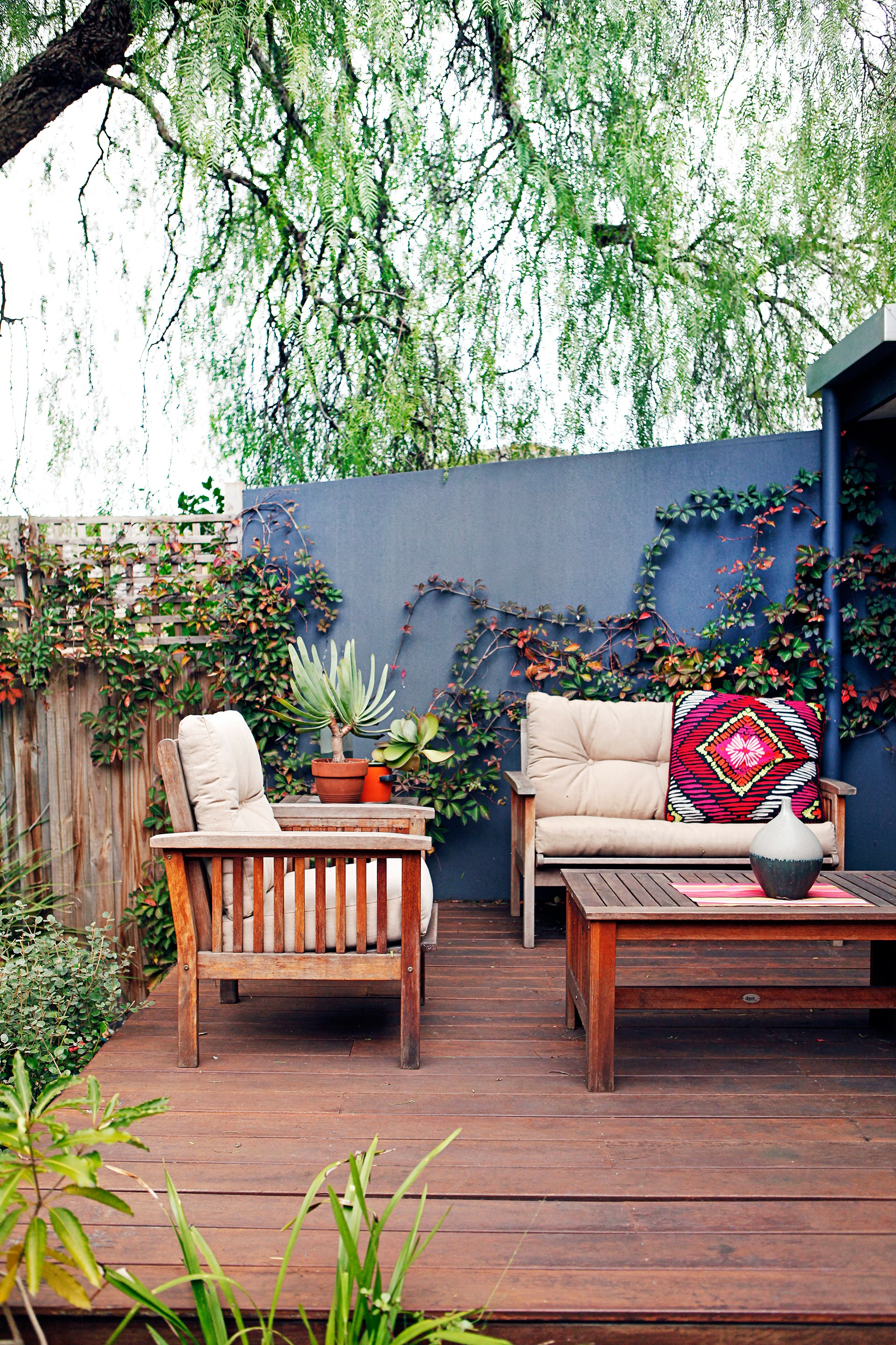 """Climbing plants are your new best friend – they provide lots of lushness for relatively little maintenance and can be used to [screen out](http://www.homestolove.com.au/top-5-screening-plants-for-your-garden-1593