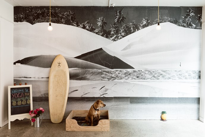 **Yoga 213** The studio has a welcoming vibe with sand-blistered brick walls offset by recycled timber, surfboards leaning against the walls and fairy lights subtly illuminating the space.