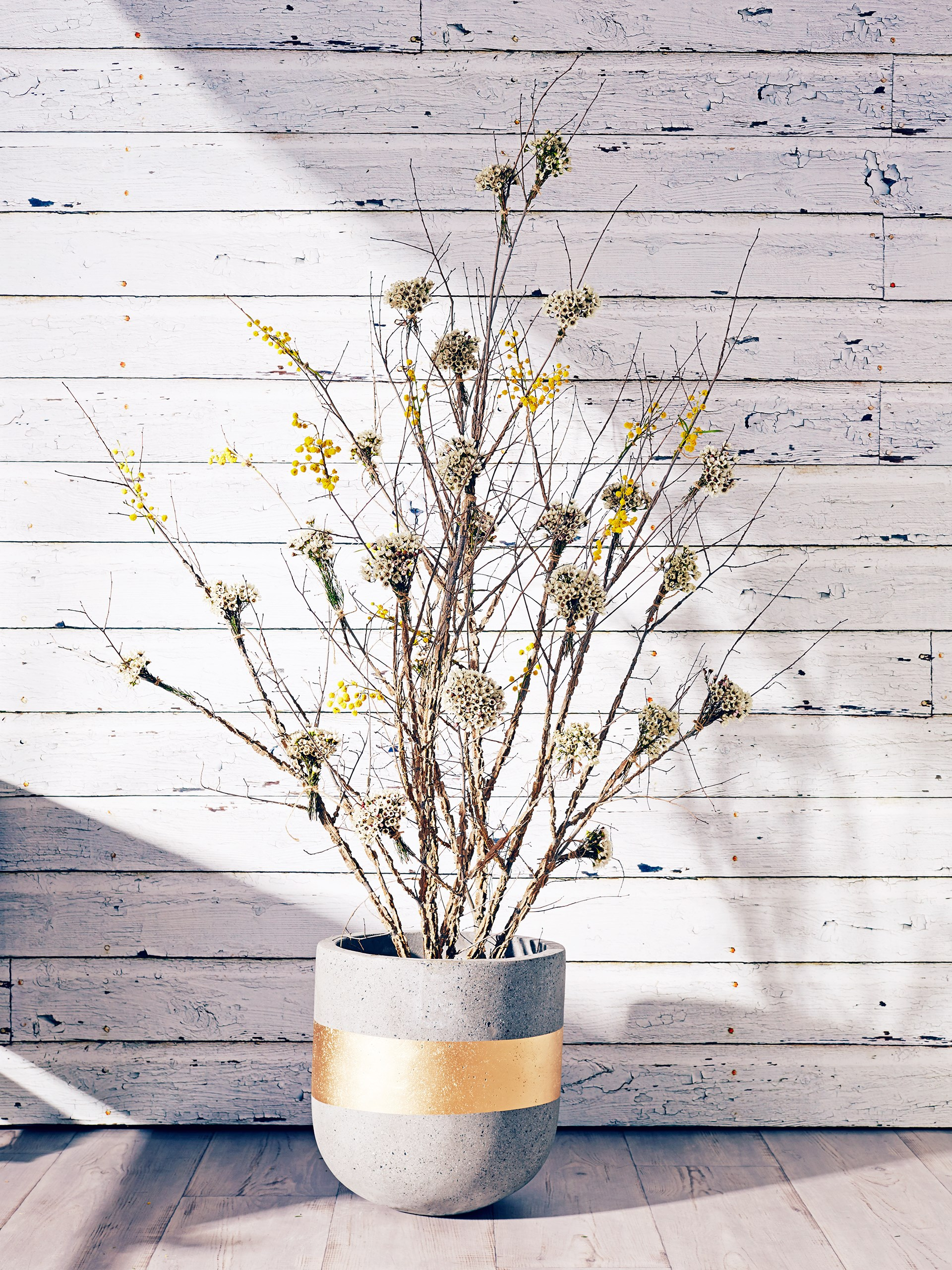 "The rustic theme flows throughout, with a neutral colour palette and a focus on native flora, natural materials and contrasting timbers. Egg concrete **pot** with Gold band from [Koskela](http://www.koskela.com.au/?utm_campaign=supplier/|target=""_blank""), holding willow, wattle and Geraldton wax floral **tree arrangement** from [Wild Blossom Flowers](http://wildblossom.com.au/?utm_campaign=supplier/