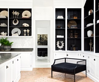 Monochrome bookcases