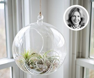 How to get them most out of your hanging planter with Helen Young
