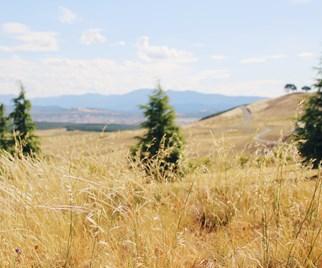 Gledswood Hills