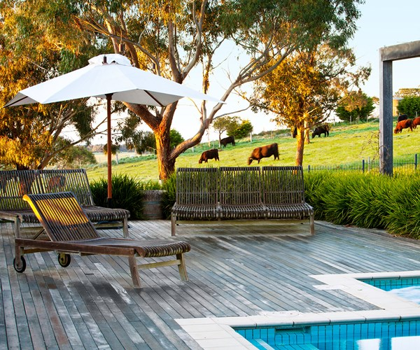 Romantic Country Garden On The Outskirts Of Melbourne