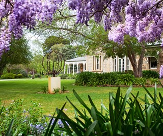 South Australian garden that bristles with life