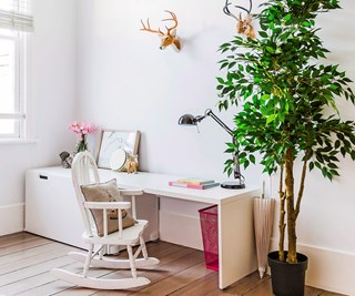 best indoor plants for winter