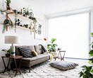 Off the plant apartment doubles as indoor jungle